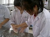 營養學實驗:PICT1515.JPG