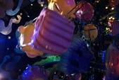 104年4月17日海洋迪士尼:DSC01145.JPG
