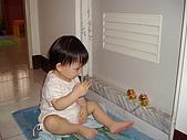 200705小昀蓁的居家生活...:小豬豬,敬禮