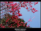 2011-2-7 桃源仙谷 大溪老街:DSC_0106.jpg