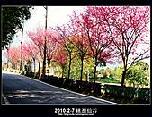 2011-2-7 桃源仙谷 大溪老街:DSC_0122.jpg