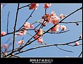 2011-2-7 桃源仙谷 大溪老街:DSC_0145.jpg