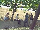 08-08-17 遊青洲:08-08-17 遊青洲 (19).j