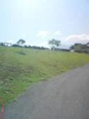 08-09-11_小聚會。:08-09-10_三地門騎單車 (4