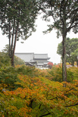 20151118_京都賞楓行_第三天-東福寺:DSC_5913.JPG