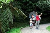 雙胞胎成長日記-東眼山-20090912:東眼山健行-20090912-050 -S.jpg