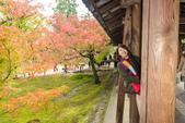 20151118_京都賞楓行_第三天-東福寺:DSC_5890.JPG