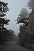 大雪山國家森林-20100814:大雪山國家森林-20100814-221 (Custom).JPG