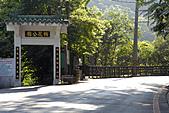 桐花公園-20110510:_DSC0024.JPG