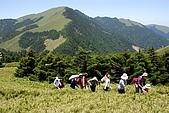 2009合歡山與太魯閣國家公園-980530:2009合歡山與太魯閣國家公園-170 (Large).jpg
