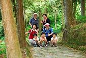 雙胞胎成長日記-東眼山-20090912:東眼山健行-20090912-059 -S.jpg
