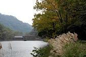 後慈湖-20111215:後慈湖-20111215-037 (Custom).JPG