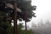 大雪山國家森林-20100814:大雪山國家森林-20100814-225 (Custom).JPG