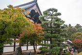 20151118_京都賞楓行_第三天-東福寺:DSC_5850.JPG