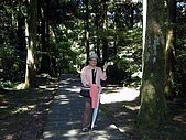 東眼山-20100704:東眼山-20100704-005.JPG