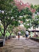 20191004_過嶺支渠步道自行車隨記:IMG_5466-2.jpg