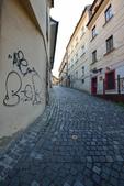 來到斯洛伐克:DSC_5606 (複製).jpg