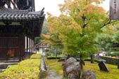 20151118_京都賞楓行_第三天-東福寺:DSC_5851.JPG