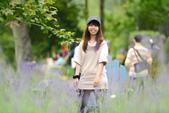 2014尖石薰衣草_2014.04.18:DSC_1660.jpg