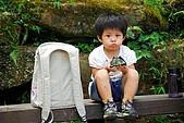 雙胞胎成長日記-東眼山-20090912:東眼山健行-20090912-084 -S.jpg