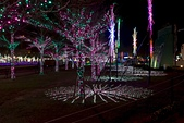 20160221_桃園燈會:DSCF3441.jpg