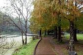 福山植物園-20111214:福山植物園-20111214-011 (Custom).JPG