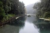 福山植物園-20111214:福山植物園-20111214-021 (Custom).JPG