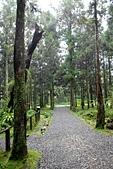 福山植物園-20111214:福山植物園-20111214-022 (Custom).JPG