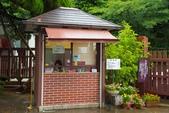 2014_日本京阪神夏日之旅_第二天:DSC_6062.jpg