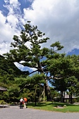 2013日本九州之旅:2013日本九州之旅_017 (複製).jpg