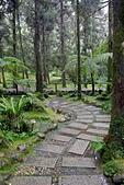 福山植物園-20111214:福山植物園-20111214-024 (Custom).JPG