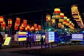 20160221_桃園燈會:DSCF3430.jpg