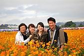 新社花海季-20091122:新社花海季-20091122-017 (Large).jpg