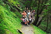 拉拉山巨木群森林浴-20091108:_DSC0187 (Large).JPG