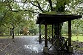 福山植物園-20111214:福山植物園-20111214-031 (Custom).JPG
