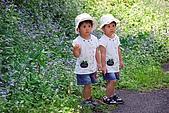 雙胞胎成長日記-東眼山-20090912:東眼山健行-20090912-029 -S.jpg