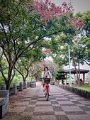 20191004_過嶺支渠步道自行車隨記:IMG_5464-2.jpg