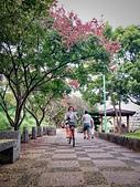20191004_過嶺支渠步道自行車隨記:IMG_5467-2.jpg