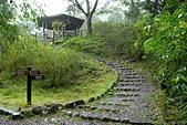 福山植物園-20111214:福山植物園-20111214-035 (Custom).JPG