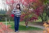 梅峰農場-20120404:梅峰農場-20120404-083 S.JPG