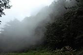 大雪山國家森林-20100814:大雪山國家森林-20100814-127 (Custom).JPG
