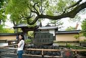 2014_日本京阪神夏日之旅_第二天:DSC_6091.jpg