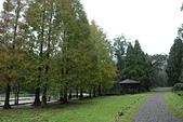 福山植物園-20111214:福山植物園-20111214-132 (Custom).JPG
