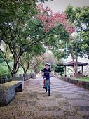 20191004_過嶺支渠步道自行車隨記:IMG_5461-2.jpg