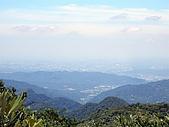 東眼山-20100704:東眼山-20100704-027.JPG