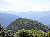 東眼山-20100704:東眼山-20100704-030.JPG