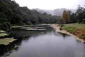 福山植物園-20111214:福山植物園-20111214-136 (Custom).JPG