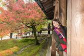 20151118_京都賞楓行_第三天-東福寺:DSC_5891.JPG
