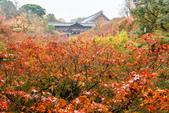 20151118_京都賞楓行_第三天-東福寺:DSC_5840.JPG