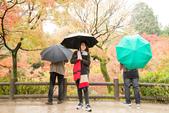 20151118_京都賞楓行_第三天-東福寺:DSC_5931.JPG